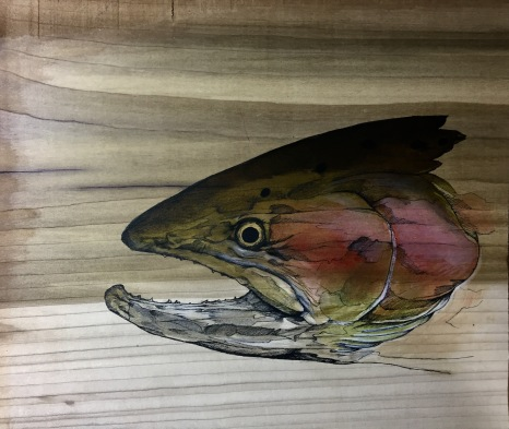 """Buck study   2017   13"""" x 11.5""""   Pen and ink on wood panel"""