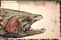 """Birds of America #2   2012   8"""" x 5.5""""   Mixed media on book cover"""