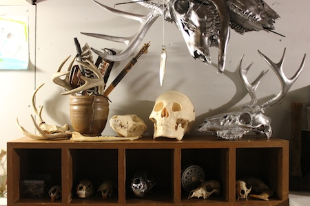 Skulls that I have known.
