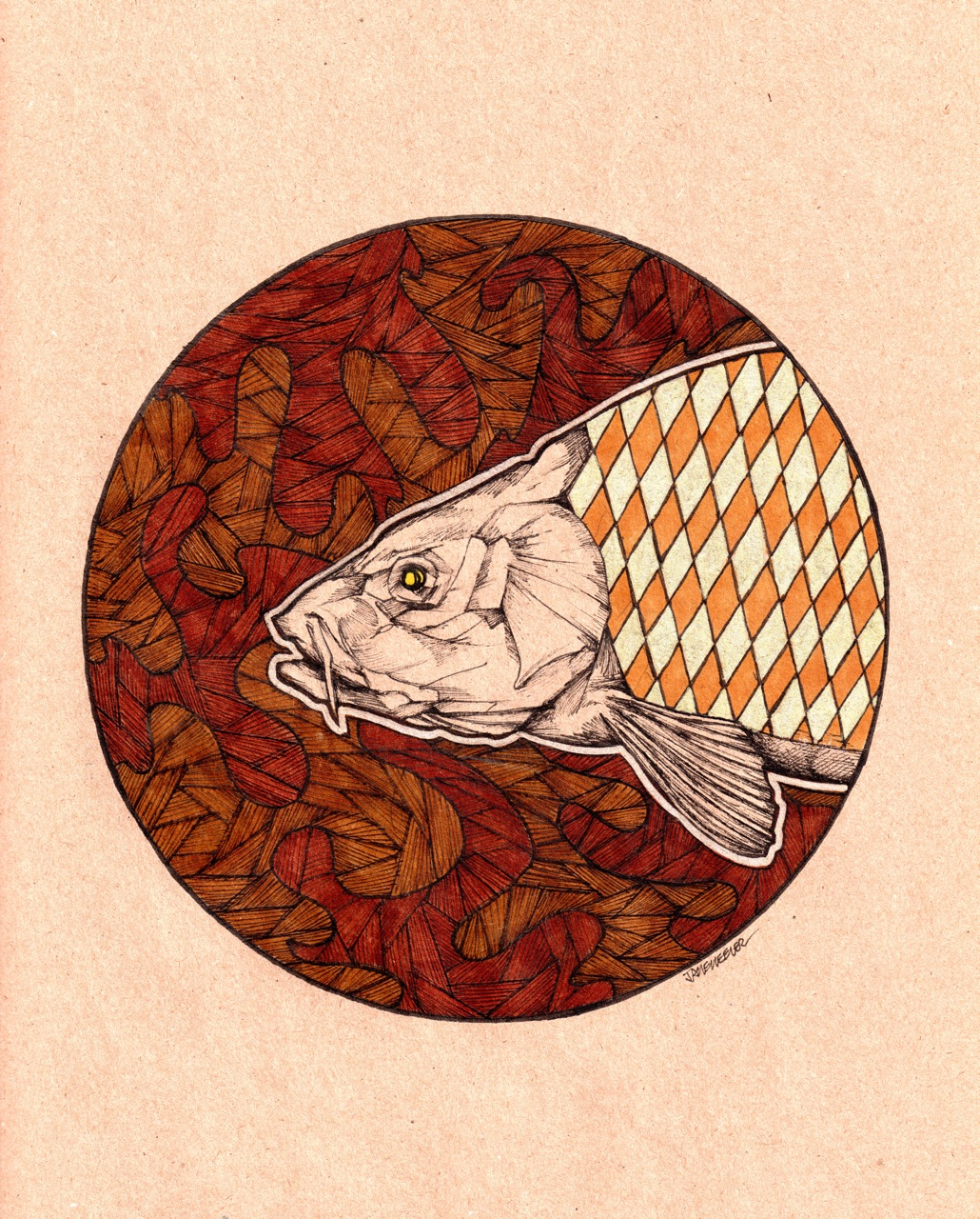 """Freshwater Bone   2013   8.5"""" x 11""""   Pen and ink on paper"""