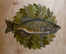 """Free The Fighter: Sauk Rapids   2014   24"""" x 24""""   Pen and ink on wood panel"""