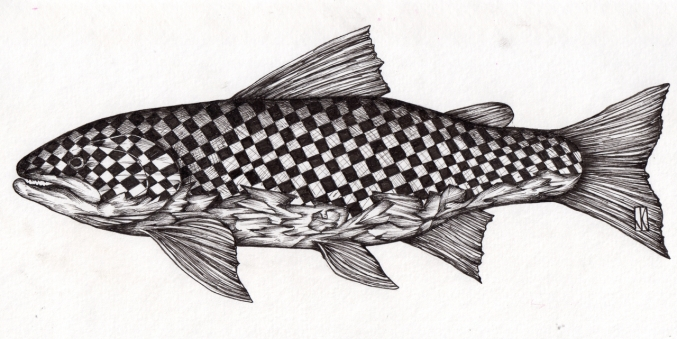 """Troutz Three   2016   11"""" x 6""""   pen and ink on paper"""